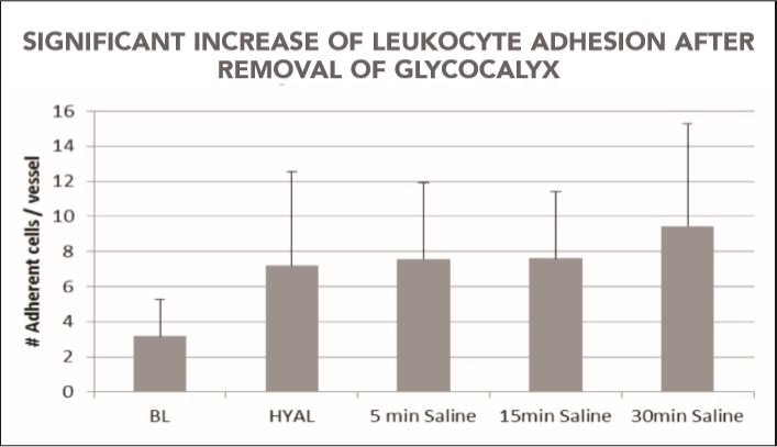 Chart showing significant increase of l adhesion after removal of glycocalyx.